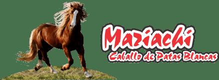 Mariachi Caballo de Patas Blancas